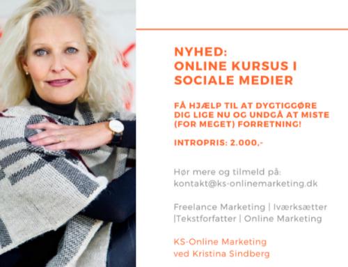 Online Kursus – Opnå Synlighed & Konverteringer Til Dit Firma Via Sociale Medier